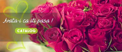 Floraria Dovaltiono – pentru barbatii care apreciaza cu adevarat femeile