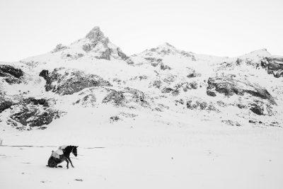 Belgianul Frederik Buyckx câștigă distincția Fotograful Anului la SWPA 2017, cea mai mare competiție de fotografie din lume