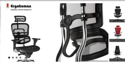 Scaune ergonomice Ergohuman