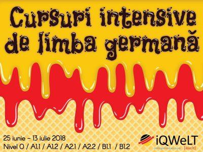 Meditatii la limba germana pentru Scoala Profesionala de la Brasov