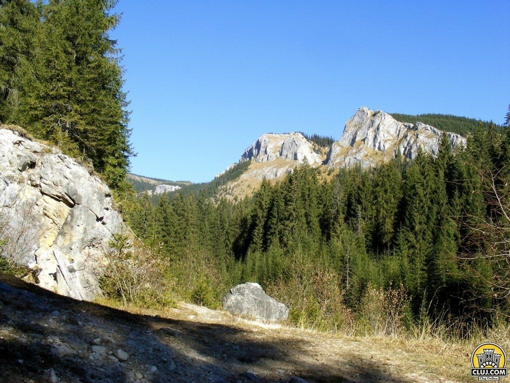 Ce poti face vara aceasta la munte?