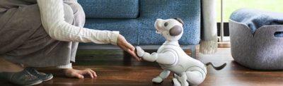 În exclusivitate în România, aibo, robotul autonom bazat pe inteligenţă artificială, prezentat în Orange Shop