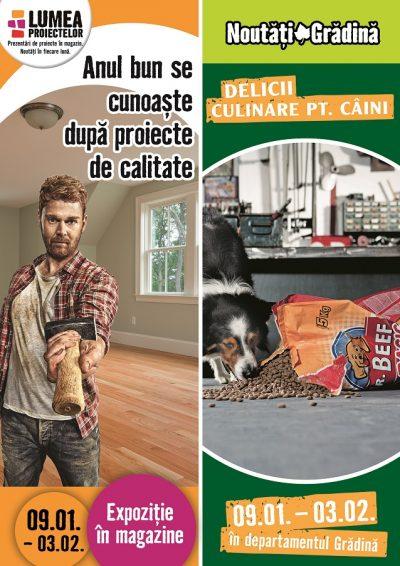 """Amenajarea corectă a încăperilor"""" și """"Hrană pentru camarazii canini"""" – proiectele lunii ianuarie la HORNBACH"""
