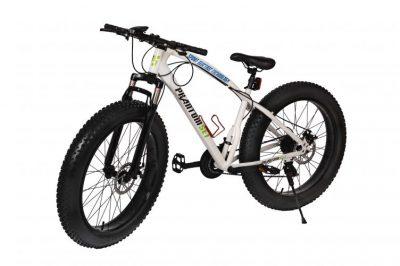 Biciclete rugged pentru orice teren